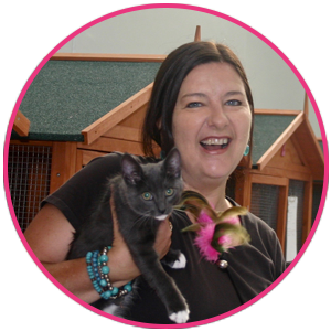 Cat care facility in Caroline Springs – Cat Sitter Services