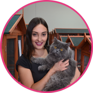 Cat Sitter in Melbourne – Contact Cattery