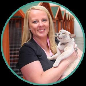 Cat Daycare Services Australia