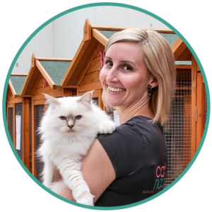Cattery Services Melbourne