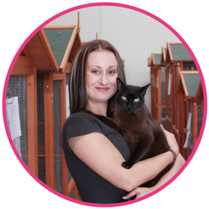 Cat Care Services in Melbourne